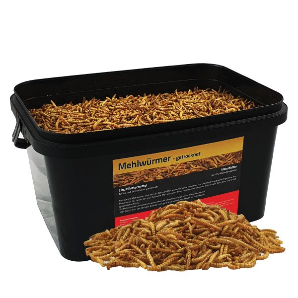Mehlwürmer getrocknet 5 Liter im Eimer