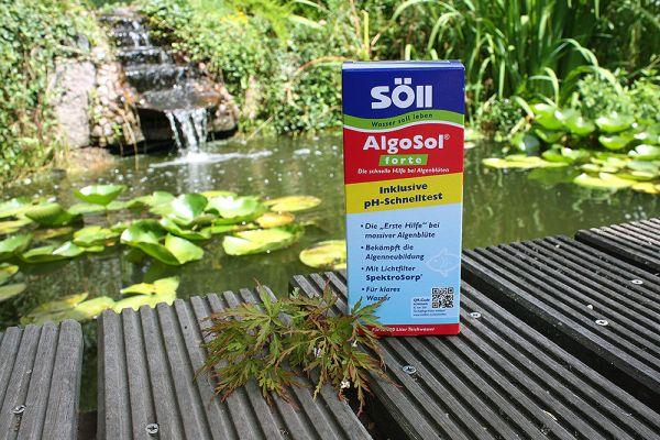 AlgoSol forte 500ml