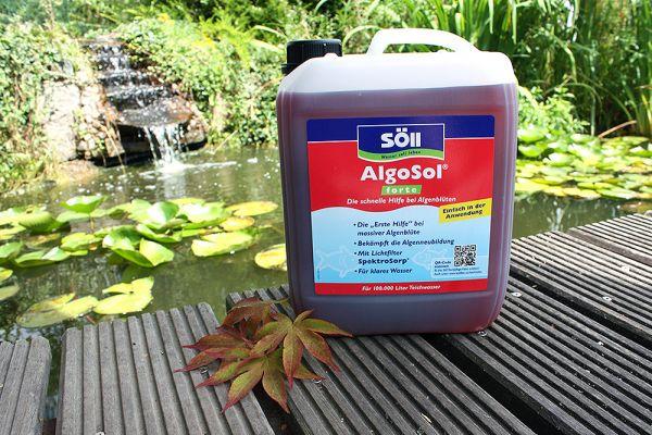 AlgoSol forte 5 Liter